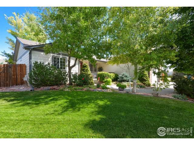 3261 Belmont Ct, Wellington, CO 80549 (MLS #894811) :: Colorado Home Finder Realty