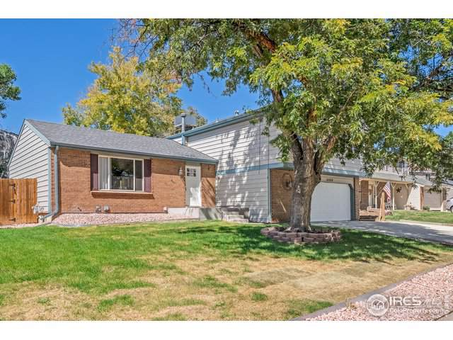 11552 Albion Ct, Thornton, CO 80233 (MLS #894814) :: 8z Real Estate
