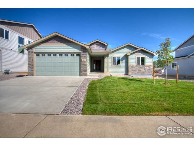 161 E Ilex Ct, Milliken, CO 80543 (MLS #894940) :: June's Team