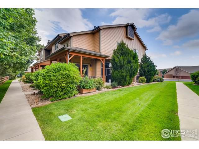 315 Carina Cir #101, Loveland, CO 80537 (MLS #895146) :: 8z Real Estate