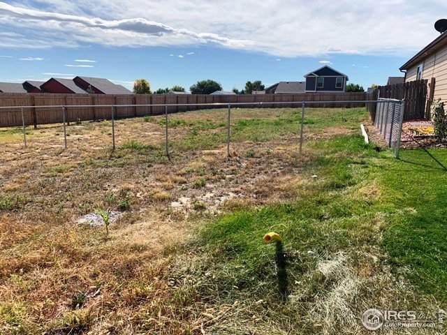 2622 Haven Ct, Evans, CO 80620 (MLS #895400) :: 8z Real Estate