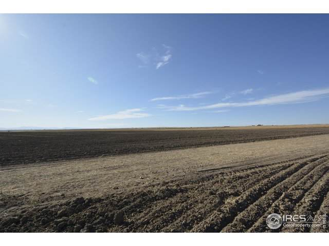 0 County Road 92 (Lot C West), Pierce, CO 80650 (MLS #895418) :: 8z Real Estate
