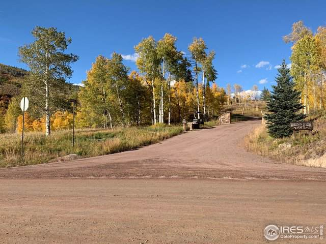 21920 County Road 16, Oak Creek, CO 80467 (MLS #895534) :: Jenn Porter Group