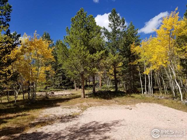 64 Nonami Ct, Red Feather Lakes, CO 80545 (MLS #895573) :: Kittle Real Estate