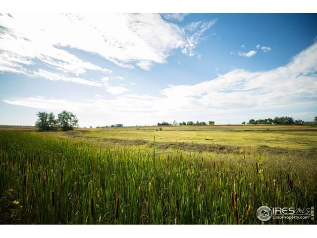 1000 N 65th St Tract A, Longmont, CO 80503 (MLS #895786) :: 8z Real Estate