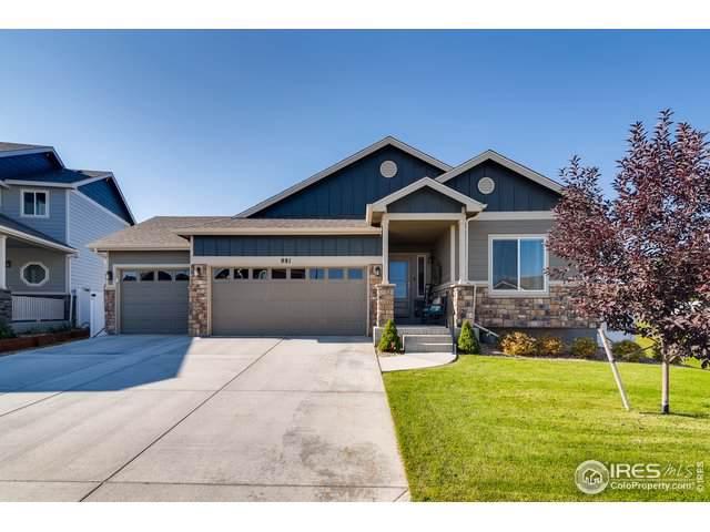 881 Shirttail Peak Dr, Windsor, CO 80550 (MLS #896005) :: 8z Real Estate