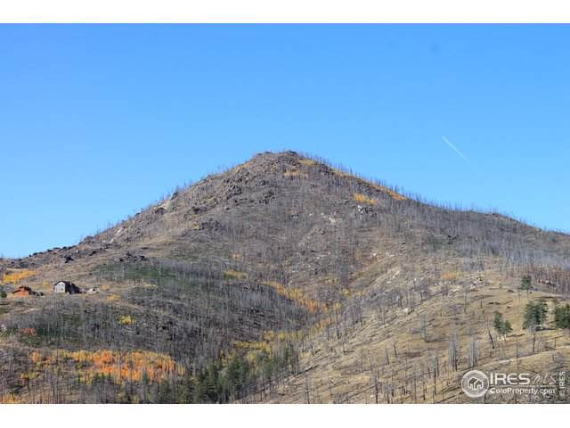 534 Lost Wilderness Way, Bellvue, CO 80512 (MLS #896164) :: 8z Real Estate