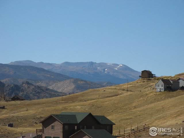 0 Haley Peak Ct, Livermore, CO 80536 (MLS #896168) :: Kittle Real Estate