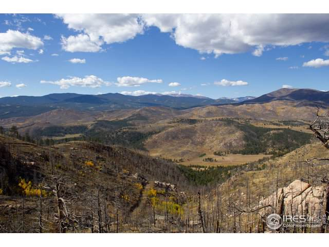 0 Black Bear Rd, Bellvue, CO 80512 (MLS #896243) :: Colorado Real Estate : The Space Agency