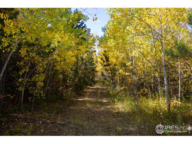 0 Rist Canyon Rd, Bellvue, CO 80512 (MLS #896247) :: Colorado Real Estate : The Space Agency