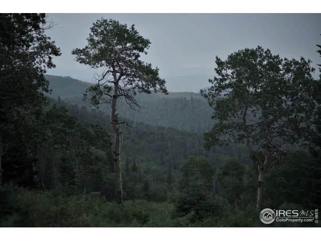15223 County Road 56, Steamboat Springs, CO 80487 (#896256) :: milehimodern