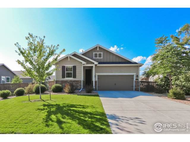 1445 Bowen St, Longmont, CO 80501 (MLS #896343) :: 8z Real Estate