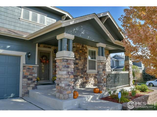 8123 E 132nd Pl, Thornton, CO 80602 (MLS #896469) :: 8z Real Estate
