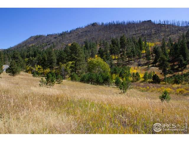 0 Rist Canyon Rd, Bellvue, CO 80512 (MLS #896470) :: Colorado Real Estate : The Space Agency
