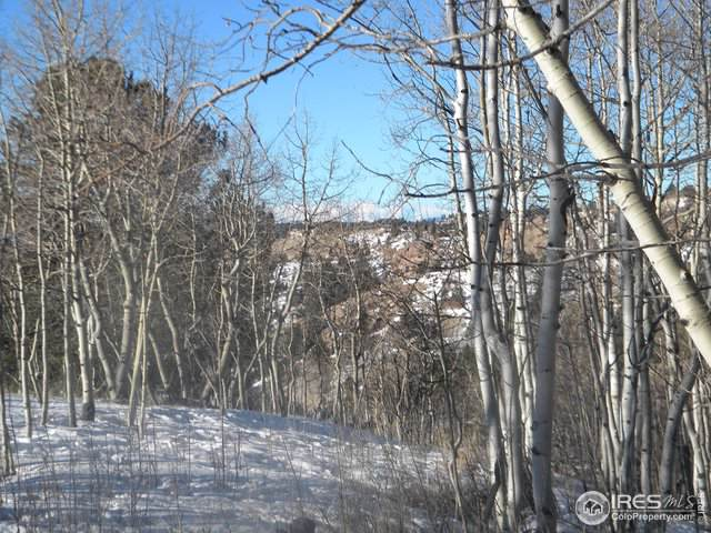 480 Strong Ct, Cripple Creek, CO 80813 (MLS #896580) :: Jenn Porter Group