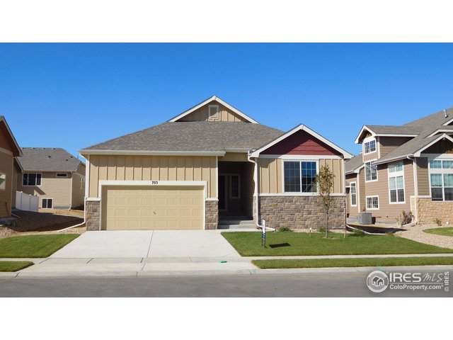 703 Mt Evans Ave, Severance, CO 80550 (MLS #896646) :: 8z Real Estate