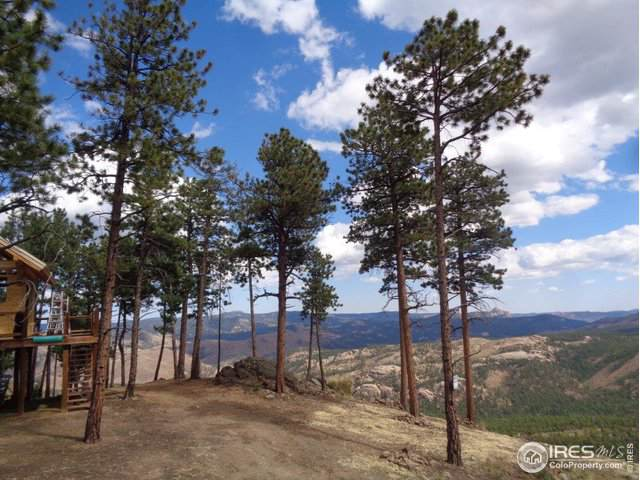 7 Holmes Gulch (Bailey,Co 80421), Pine, CO 80470 (MLS #896718) :: Hub Real Estate