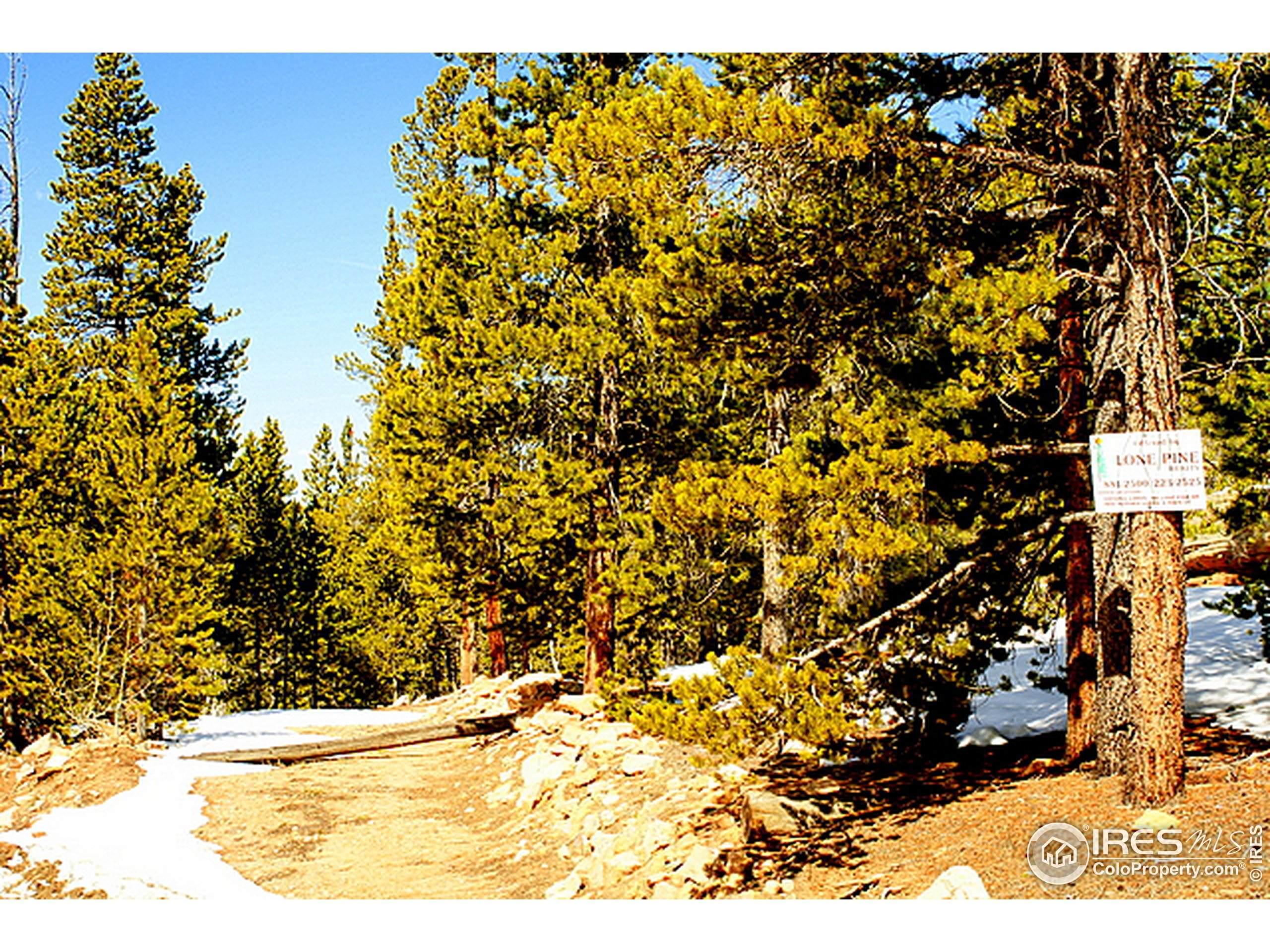 477 Mt Belford Dr, Severance, CO 80550 (MLS #896738) :: 8z Real Estate