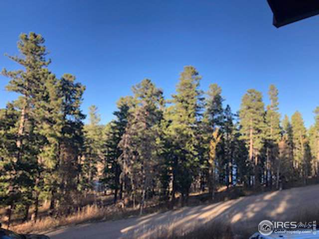 0 Lakeview Dr, Nederland, CO 80466 (MLS #896801) :: J2 Real Estate Group at Remax Alliance