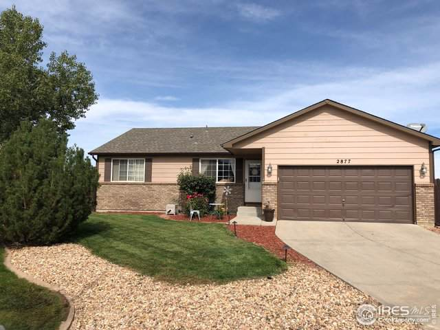 2877 42nd Ave, Greeley, CO 80634 (MLS #897030) :: 8z Real Estate