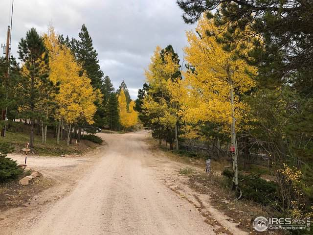 55 Pottawatomie Trl, Red Feather Lakes, CO 80545 (MLS #897185) :: Hub Real Estate