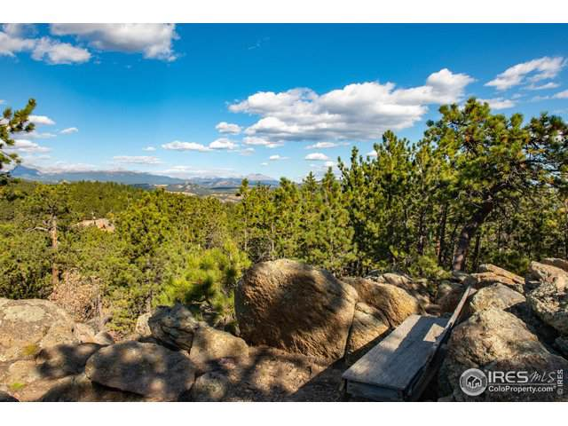 93 Gross Dam Rd, Golden, CO 80403 (MLS #897342) :: Downtown Real Estate Partners