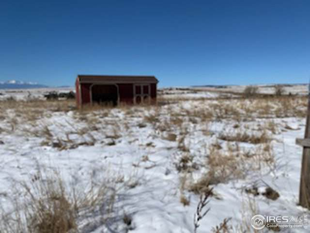 24355 Palomino Pl, Calhan, CO 80808 (MLS #897841) :: 8z Real Estate