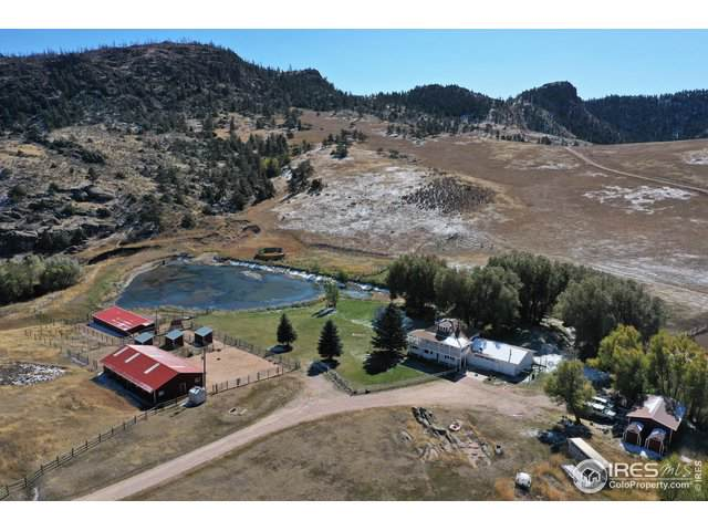 222 Boxer Ranch Rd, Livermore, CO 80536 (MLS #898194) :: Kittle Real Estate