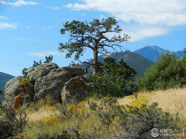 1519 Vista View Ln, Estes Park, CO 80517 (MLS #898321) :: Hub Real Estate