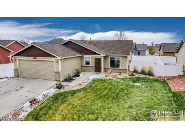 3781 Mount Ouray St - Photo 1