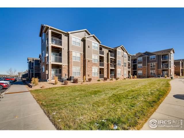 3045 Blue Sky Cir #303, Erie, CO 80516 (MLS #898876) :: 8z Real Estate