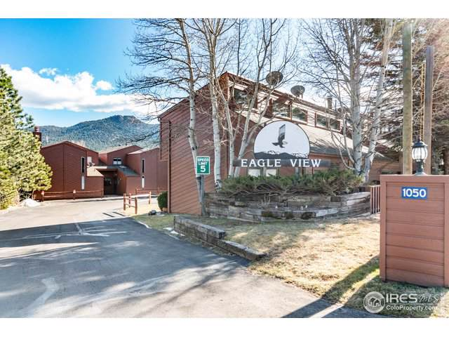 1050 S Saint Vrain Ave #3, Estes Park, CO 80517 (MLS #898926) :: Jenn Porter Group