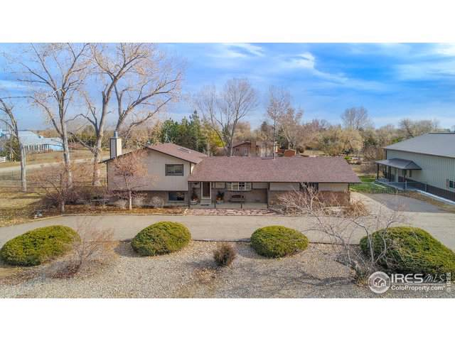 10350 Macedonia St, Longmont, CO 80503 (#899115) :: The Griffith Home Team