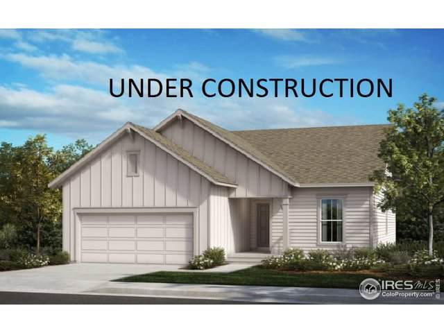 1518 Biffle Ct, Berthoud, CO 80513 (MLS #899188) :: 8z Real Estate