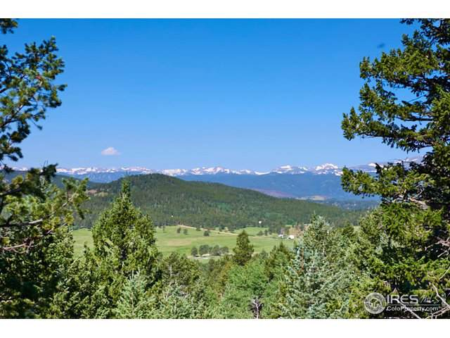 0 Magnolia Dr, Nederland, CO 80466 (MLS #899265) :: Tracy's Team