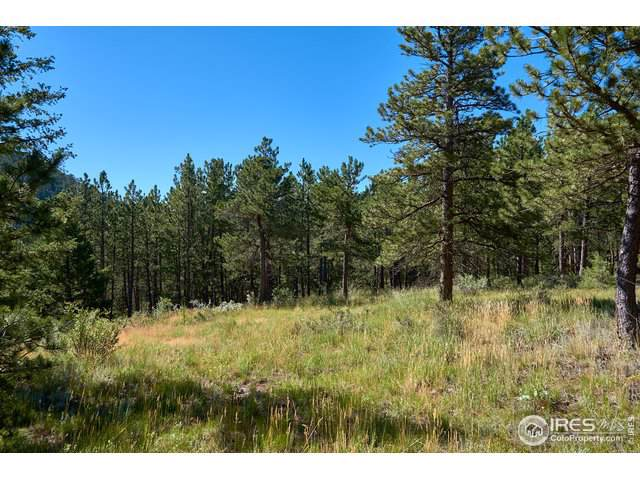 0 Spruce Dr, Lyons, CO 80540 (MLS #899486) :: Colorado Home Finder Realty