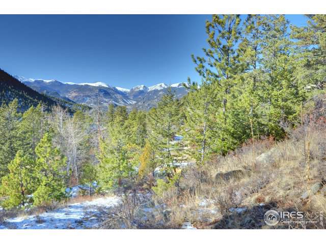0 Timber Ln, Estes Park, CO 80517 (MLS #899609) :: HomeSmart Realty Group