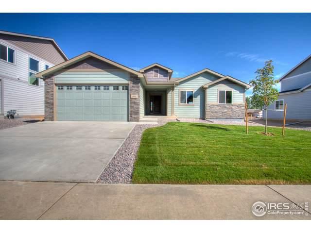 161 E Ilex Ct, Milliken, CO 80543 (MLS #899612) :: 8z Real Estate