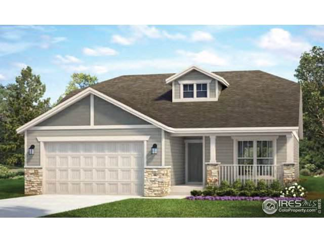 652 White Tail Ave, Greeley, CO 80634 (MLS #899756) :: 8z Real Estate