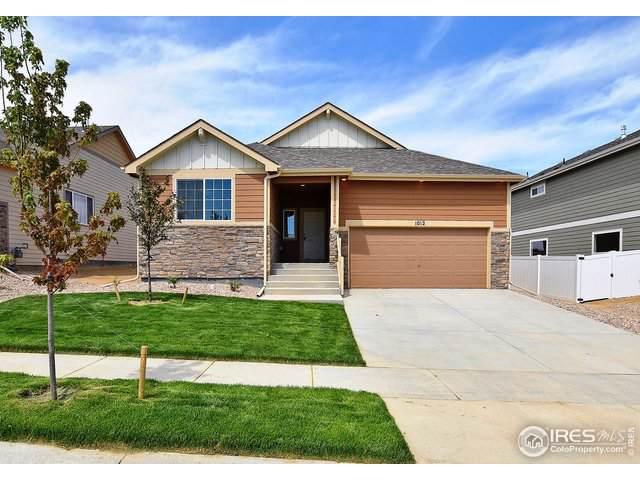 6467 Black Hills Ave, Loveland, CO 80538 (MLS #899816) :: 8z Real Estate