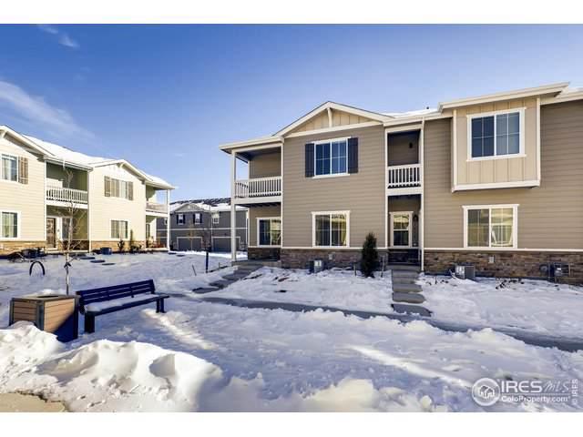 1416 Sepia Ave, Longmont, CO 80501 (MLS #899840) :: 8z Real Estate