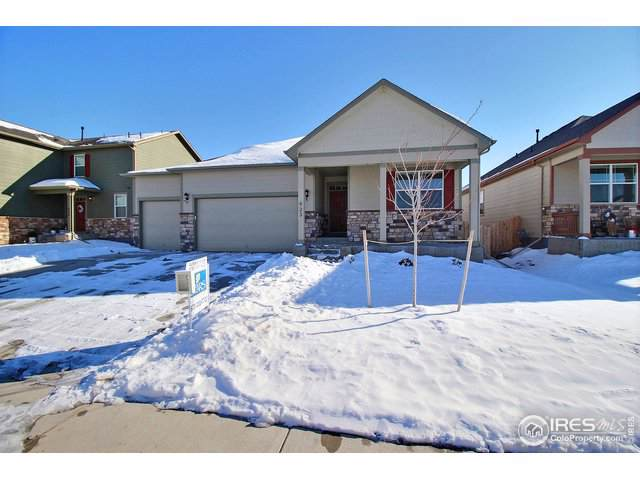923 Charlton Dr, Windsor, CO 80550 (MLS #899865) :: Keller Williams Realty