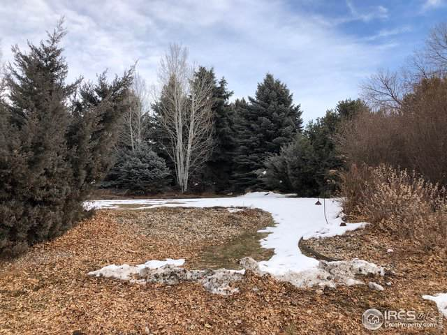 1804 Cottonwood Point Dr, Fort Collins, CO 80524 (MLS #900337) :: Fathom Realty