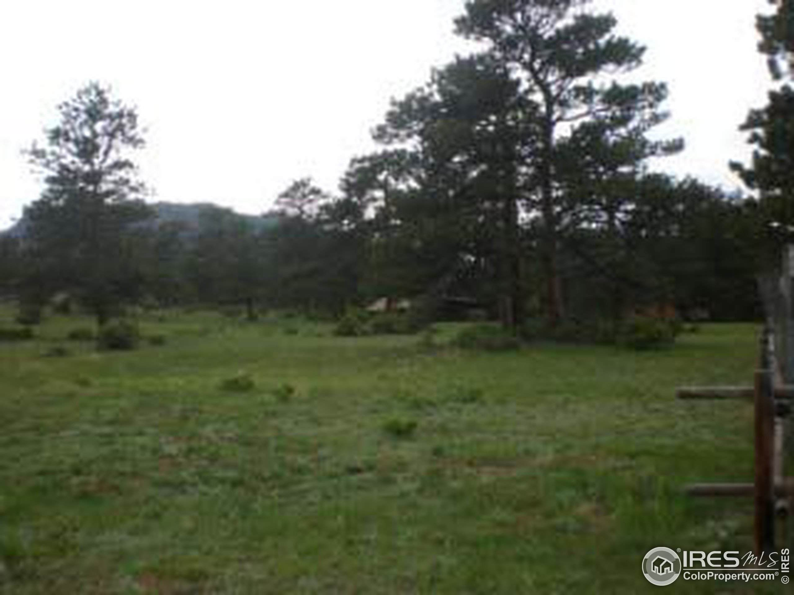 11715 Swadley Dr, Lakewood, CO 80215 (MLS #900502) :: 8z Real Estate