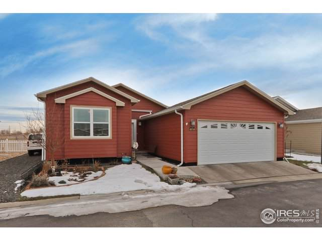 6115 Laural Grn, Frederick, CO 80530 (#900721) :: The Dixon Group