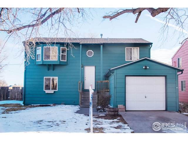 8540 3rd St, Wellington, CO 80549 (MLS #901639) :: Bliss Realty Group
