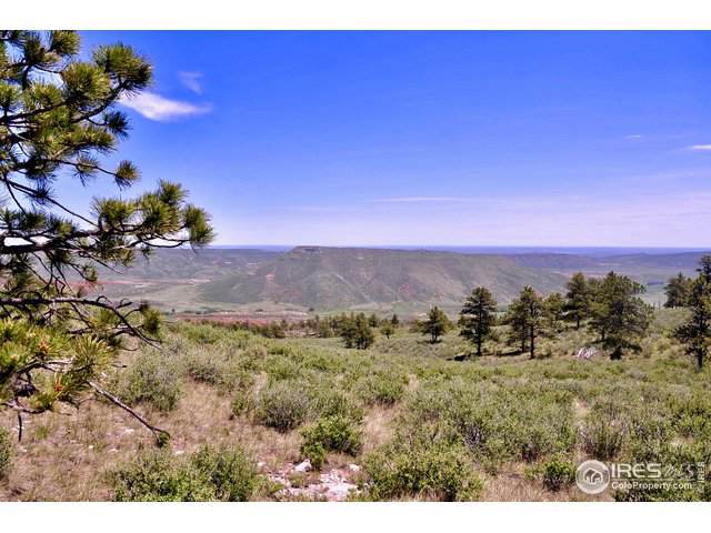 5649 Hawk Canyon Road Rd, Wellington, CO 80549 (MLS #901685) :: Bliss Realty Group