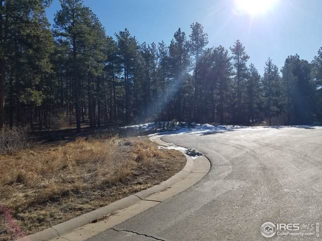 1684 Wild Timber Ct, Franktown, CO 80116 (MLS #901720) :: 8z Real Estate