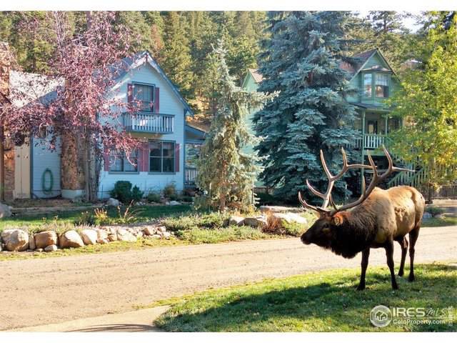 2222 Highway 66 #18, Estes Park, CO 80517 (MLS #901841) :: Jenn Porter Group