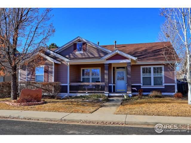 5116 Mt Buchanan Ave, Frederick, CO 80504 (#901944) :: HomePopper